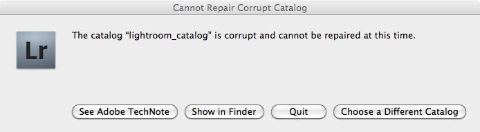 no repair catalog lightroom
